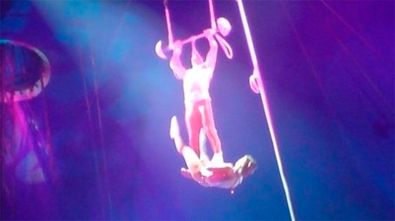Trapecsita Circo